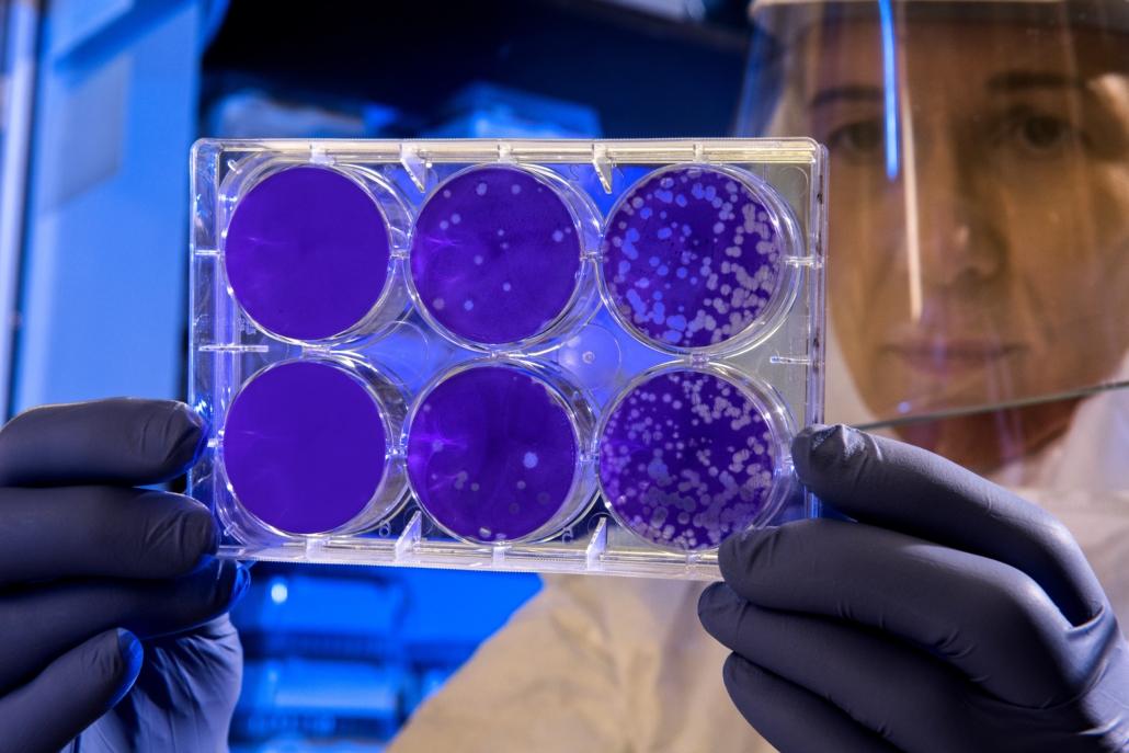 powłoki nanocząsteczkowe