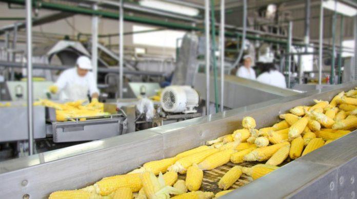 Giełdowy Indeks Produkcji mocno w dół